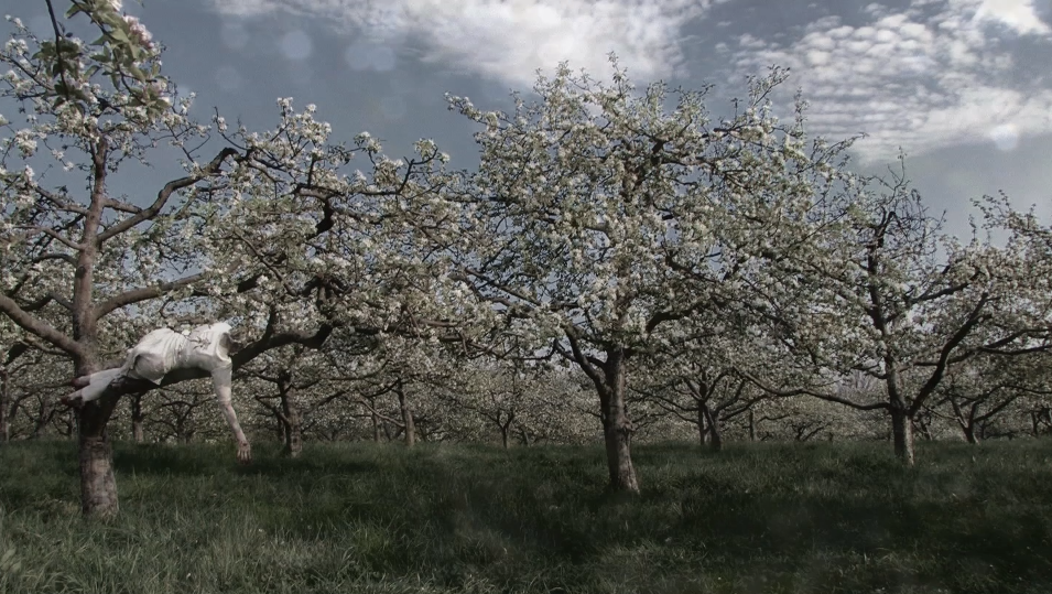 """Alaripu - Dissecting the Blossom"", Video-performance (dance for the camera), 2012-13. HD Video still, USA."